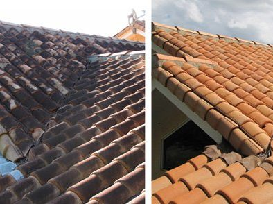 Roof cleaning mold and mildew